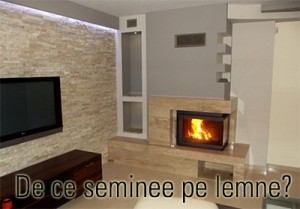 de_ce_seminee_pe_lemne